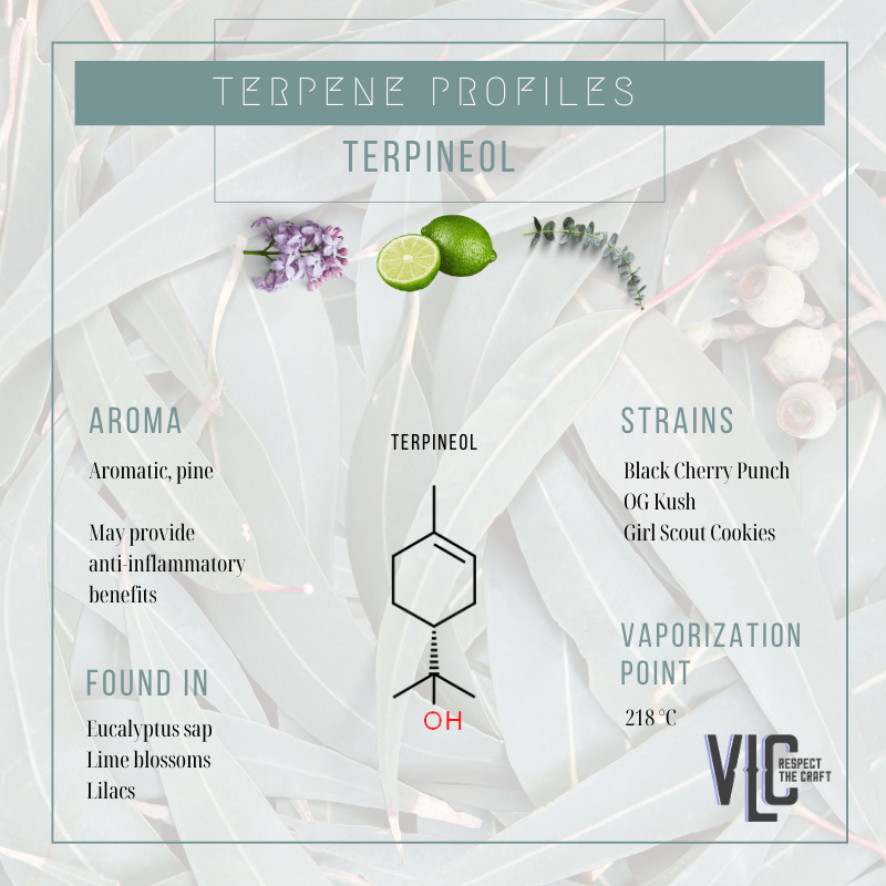 Terpineol - Vigr Life Cannabis