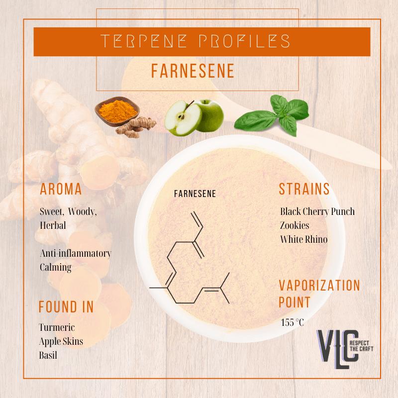 Farnesene - Vigr Life Cannabis